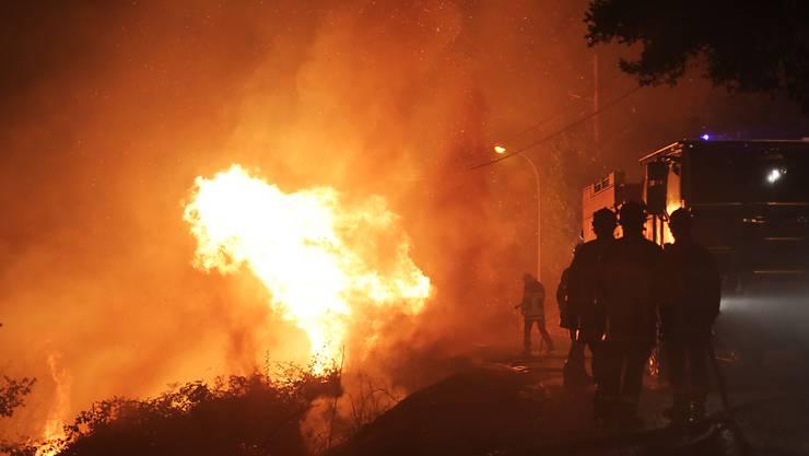 Feuerwehrleute im Kampf mit den Flammen bei Biguglia auf Korsika.