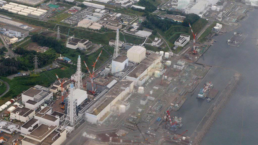 Das Atomkraftwerk Fukushima war am 11. März 2011 durch ein Erdbeben und einen Tsunami schwer beschädigt worden. (Archivbild)
