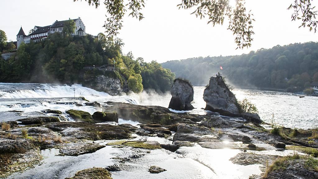 Wenig Wasser am Rheinfall wie hier 2018 dürfte künftig häufiger vorkommen. Denn die Sommer werden aufgrund des Klimawandels trockener und heisser. (Archivbild)