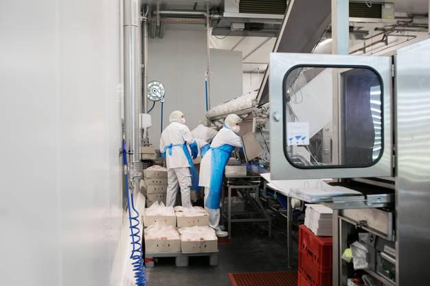 Die Mitarbeiter der Firma Nutrivalor müssen auf vieles achten - zum Beispiel dürfen sich die Wege der verschiedenen Fleischarten nicht kreuzen und die Ware für China muss in separaten Räumen verarbeitet und gelagert werden.