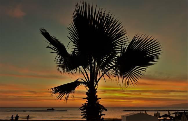 Playa Fanabe, Wassertemperatur 22 Grad auf Teneriffa. 24 Grad Lufttemperatur, am 24. Nov. 2017, 1800 Uhr. Das nennt man hier winterliches Wetter.