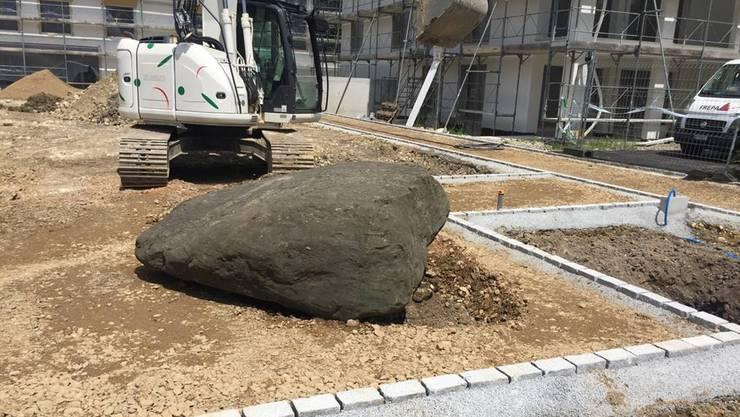 Mit dem Rhonegletscher wurde dieser 300 Millionen Jahre alte Stein bis nach Recherswil transportiert.