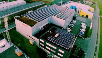 Das Dach der Multiforsa AG in Auw ist mit 716 Solarpanels belegt. zvg