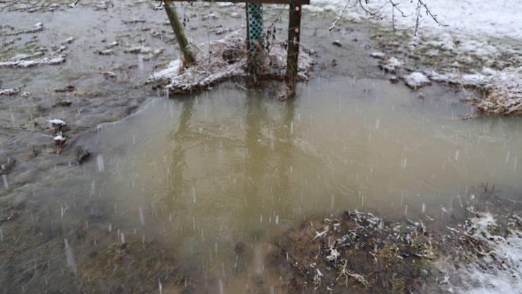 Bilder vom Hochwasser und den Überschwemmungen im Wynental am Donnerstag, 14. Januar 2021: Trolerbach.