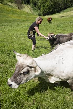Das Konzept der Villa Kuhnterbunt lautet: Kein Tier wird geschlachtet und keine Kuh gemolken.