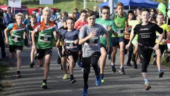 Hallwilerseelauf 2018 Junioren und Juniorinnen