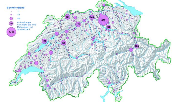 Die geografische Verteilung der in der ZHAW-App verzeichneten Zeckenstiche der Jahre 2015 und 2016. Viele Siedlungsgebiete sind betroffen.
