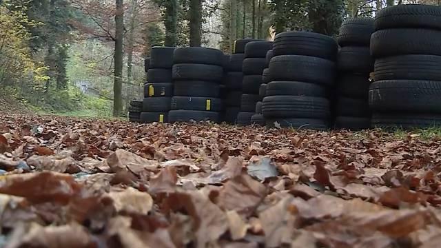 Schafisheim: Illegal Pneus im Wald entsorgt – «Es ist eine Sauerei»
