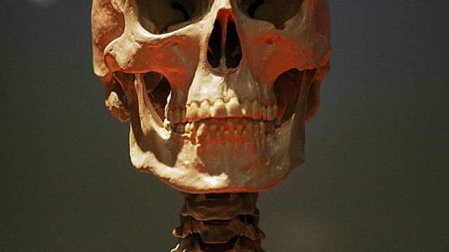 Vom Mann war nur noch das Skelett übrig (Symbolbild)