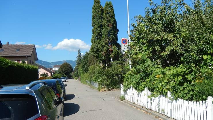 Trotz Parkverbot stehen die Autos oft auf beiden Seiten der Eigerstrasse.