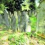 Einzigartiges Kulturgut: Die Grabsteine auf dem jüdischen Friedhof zwischen Lengnau und Endingen sind bis zu 270 Jahre alt.