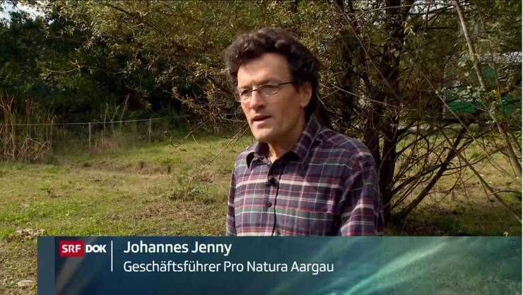 Johannes Jenny hat eine klare Meinung: Jäger sollen streunende Katzen abschiessen dürfen, weil diese der Artenvielfalt in der Schweiz schaden,