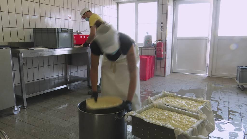Ensoy: Startup will das Tofu-Geschäft revolutionieren