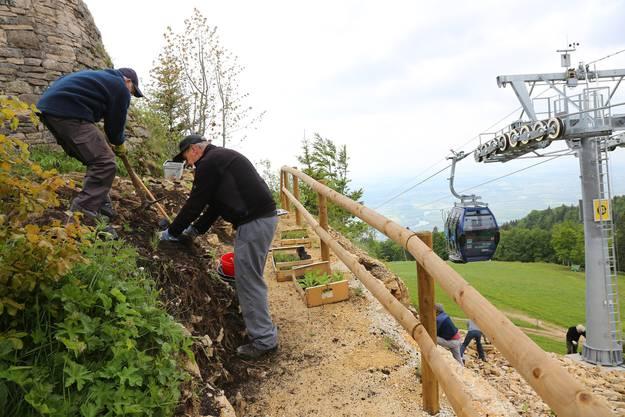 Juragarten - Rundweg mit Geländer