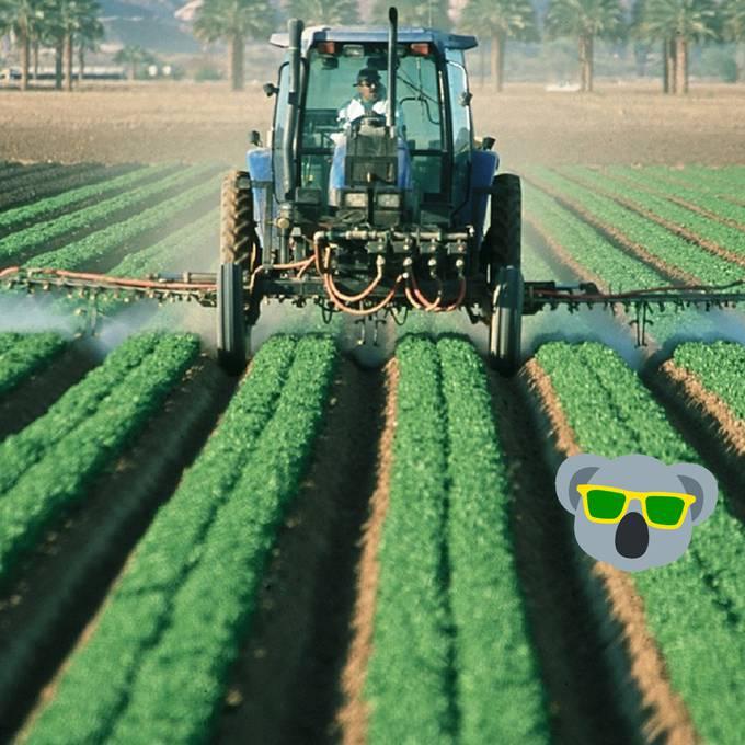 Forscher zeigen, wie Europa ohne Pestizide ernährt werden kann