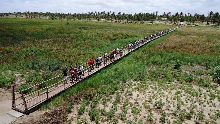 Die 235 Meter lange Brücke wurd aus einheimischen Hözern gebaut und passt sich gut in die Umgebung ein.