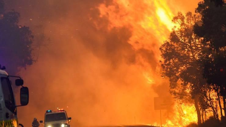Ein riesiger Buschbrand wütet im Westen Australiens. Bei dem Feuer bei der Ortschaft Yarloop kamen mindestens zwei Menschen ums Leben.