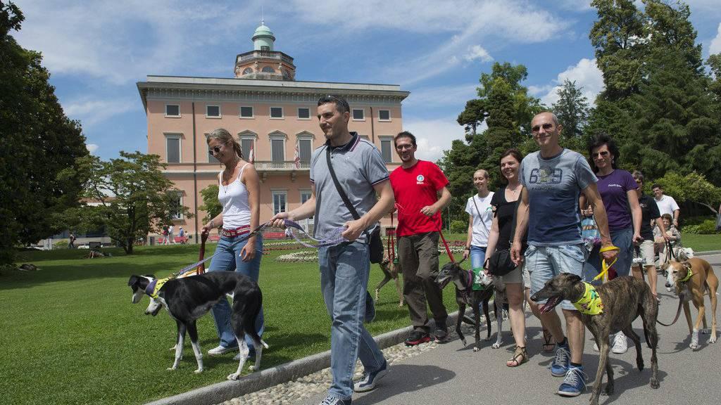Ein vermeintlicher Giftköder verunsichert Hundebesitzer im Linthgebiet.