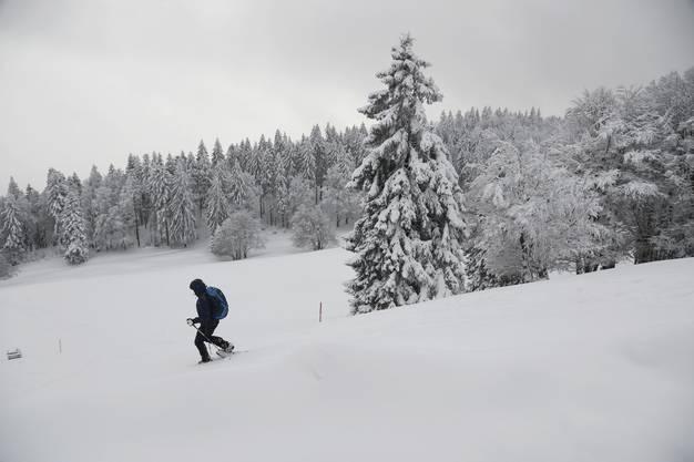Schneewanderer und Schlittler genossen die hochwinterlichen Verhältnisse auf dem Berg, wenn auch die Skilifte noch nicht in Betrieb genommen werden konnten.