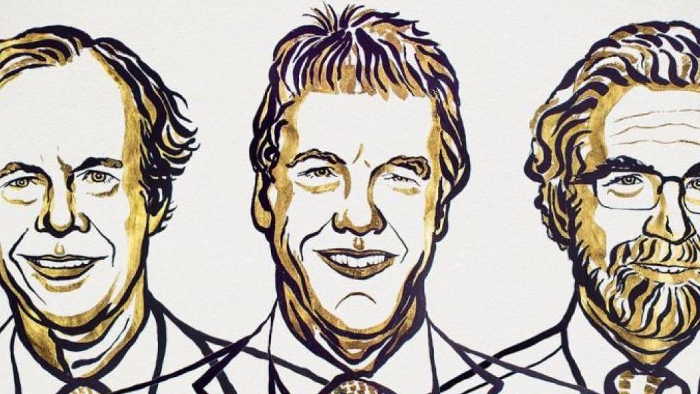 Den Medizin-Nobelpreis 2019 teilen sich William G. Kaelin Jr, Sir Peter J. Ratcliffe und Gregg L. Semenza.