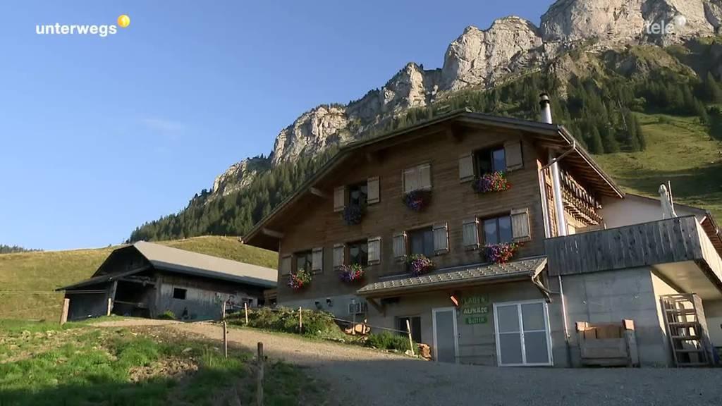 Auf der Alp - Teil 1