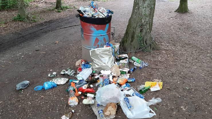 Überquillende Abfallberge und Littering sorgen für Unmut in Bremgarten.