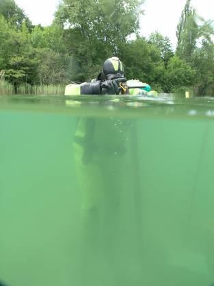 Forschungstaucher im Einsatz. Die Siedlung liegt nahe am Ufer und nur gut einen Meter tief unter Wasser.