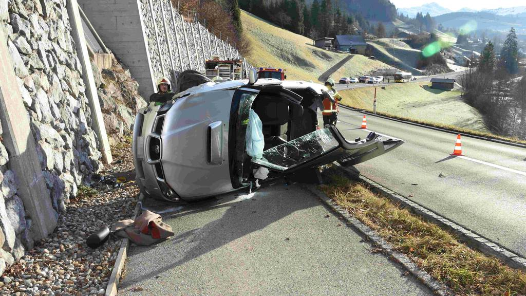 Frau baut schweren Unfall wegen Tier