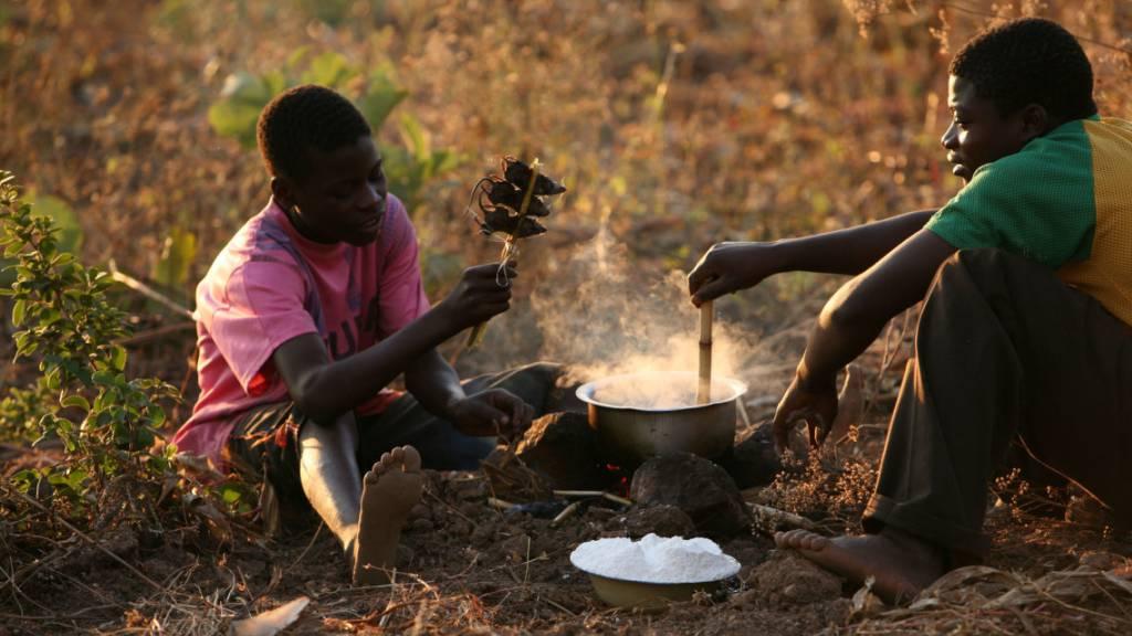 Uno-Chef warnt vor «globalem Lebensmittel-Notstand»