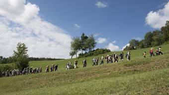 Leserwanderung von Villnachern nach Effingen