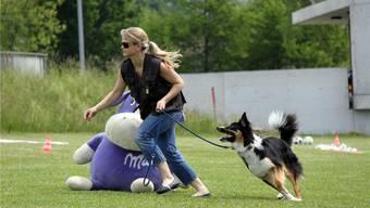 Hunde-Military hat nichts mit Militär zu tun: Der Name steht für einen Plausch-Anlass von Zwei- und Vierbeinern.