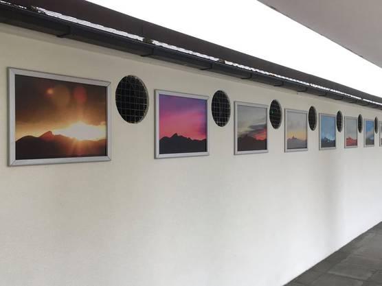 16 von Daniel Portmanns Bildern sind in der Oltner Badi ausgehängt.