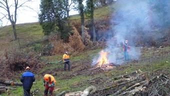 Walder-Preis 2013 geht an Solothurner Forstprojekt