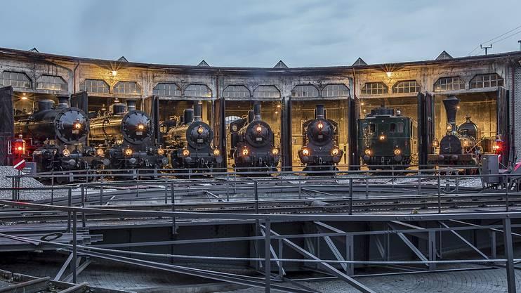Blick auf die von der Stiftung Bahnpark Region Brugg unterhaltene Rundlokremise.