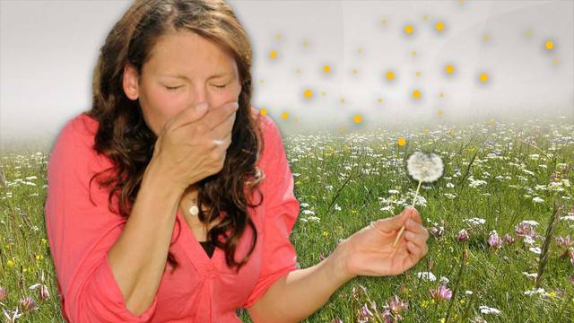 Pollen-Alarm