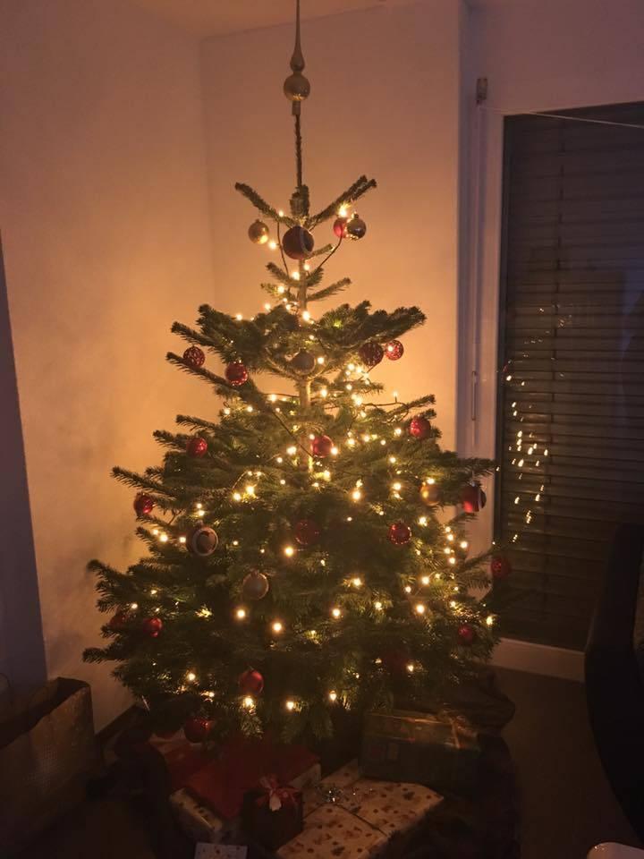 Der Christbaum von Hanna