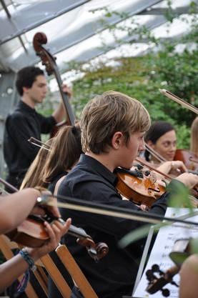 Jugendorchester Freiamt spielt im Schaugewächshaus des Reussparks