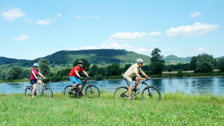 Biken am Rhein