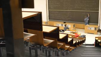 «Es ist sehr schwierig festzustellen, ob die Studierenden noch mitkommen»: ETH-Professor Thomas Ihn hält Online-Vorlesungen.