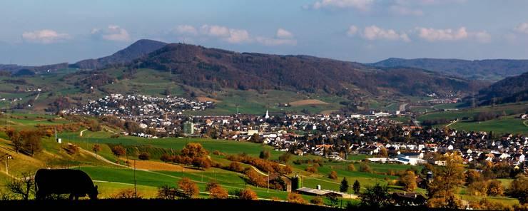 In der Nähe der Waldhütte in Gipf-Oberfrick hat man einen herrlichen Blick über die kirschbaumreiche Landschaft.