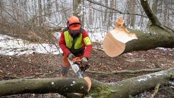 Die Gemeinden Riniken, Villnachern und Bözberg übertragen die Beförsterung ihrer Waldungen der Forstverwaltung Brugg.
