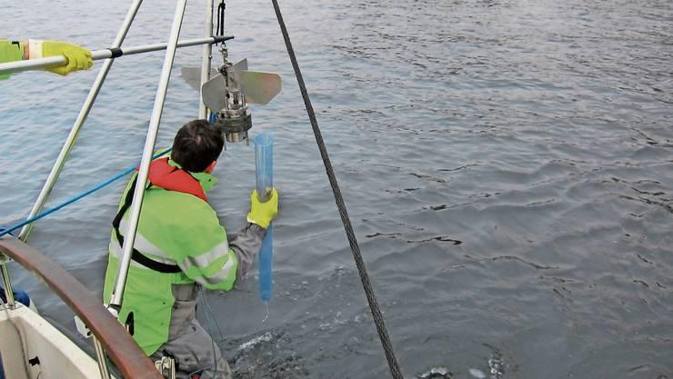 Mit Rammkolben holen die Forscher Sedimentproben vom Seegrund, die auf Schadstoffe untersucht werden.