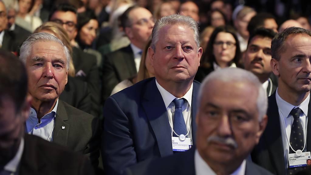 Al Gore fordert Schutz des Amazonas-Regenwaldes