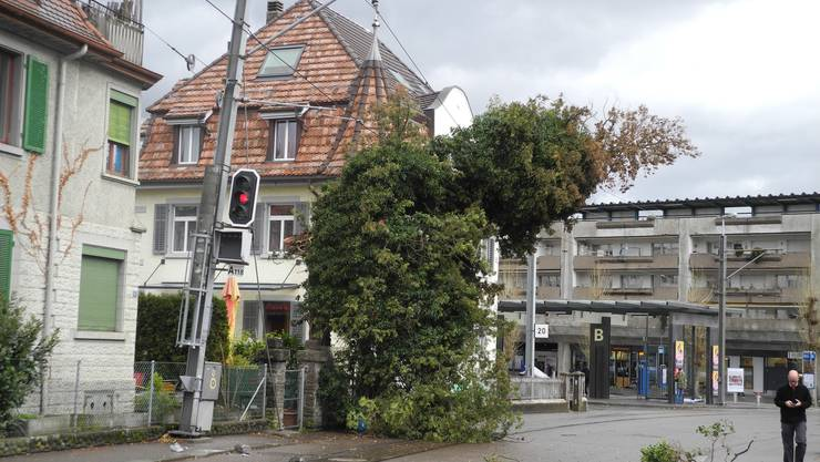 Der Sturm «Burglind» fegte gestern Mittag durch das Limmattal. Aufgrund der starken Winde viel in Dietikon ein Baum auf die Fahrleitung der Bremgarten-Dietikon-Bahn.