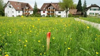 Einzonen geht nicht mehr. Darum ist das Wachstum kleiner, ländlicher Gemeinden wie Scherz begrenzt.