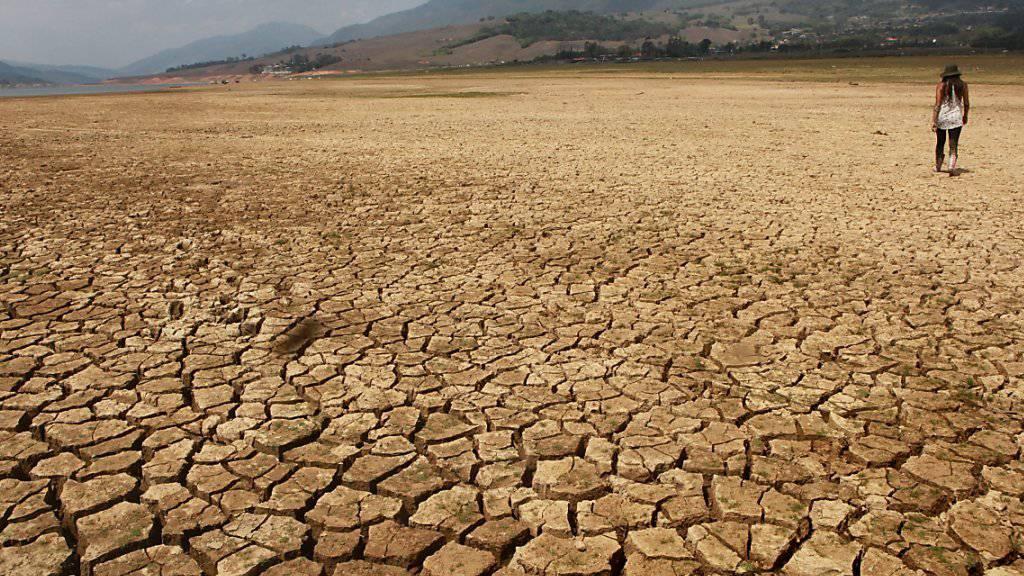 Das Klimaphänomen El Niño hat den Calima-See in Kolumbien durch anhaltende Dürre schrumpfen lassen. Laut Angaben der Weltorganisation für Meteorologie  sind El Niño und die Klimaerwärmung Ursache für Wärmerekorde wie 2015 und nun auch der Januar 2016.