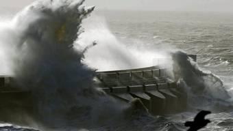 Die Autorin wohnt seit viereinhalb Jahren in Brighton an der britischen Südküste: Im Bild die sturmgepeitschte Marina der Küstenstadt.