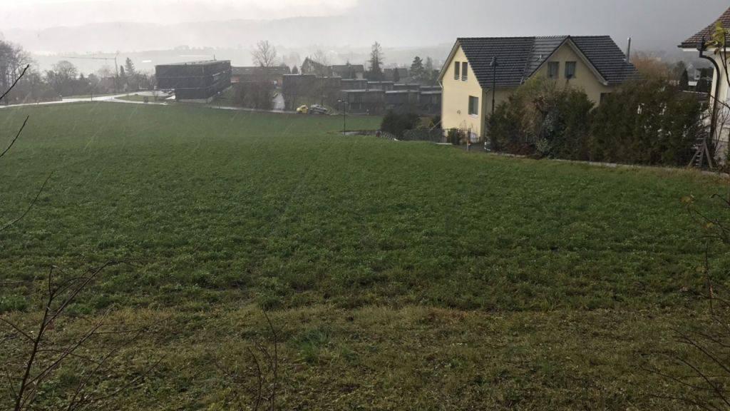 Querfeldein über eine Wiese ist ein führerloses Fahrzeug im Baselbiet gefahren. Nach über 300 Metern endete die Fahrt des Personenwagens an einer Hausmauer. Verletzt wurde niemand.