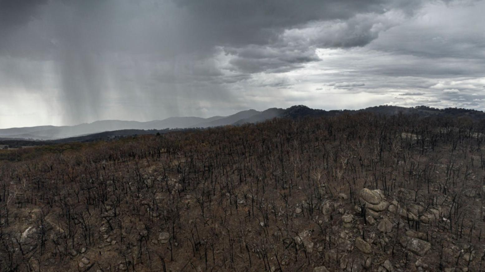 Endlich Regen: Grosse Erleichterung in Australien
