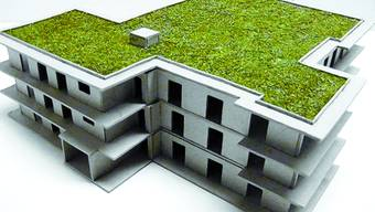 So sieht das Mehrfamilienhaus im Projekt Brüggbach aus.